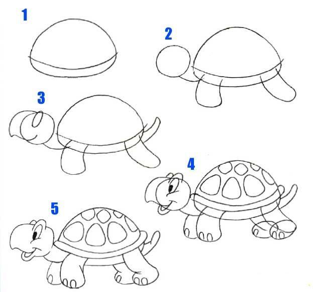 Jak narysować żółwia :> na jak rysować... - Zszywka.pl