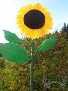 słonecznik z krepiny :)