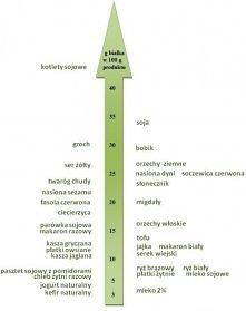 zawartość białka w produktach spożywczych. Pomoc dla wegetarian ;)