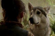 Nymeria <3