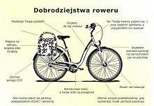 I ♥ rower
