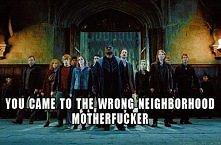 HP memes <3