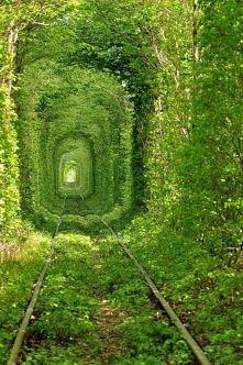 Tunnel of Love - Stary tunel kolejowy w Kleven, Ukraina