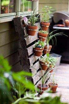 mały ogród