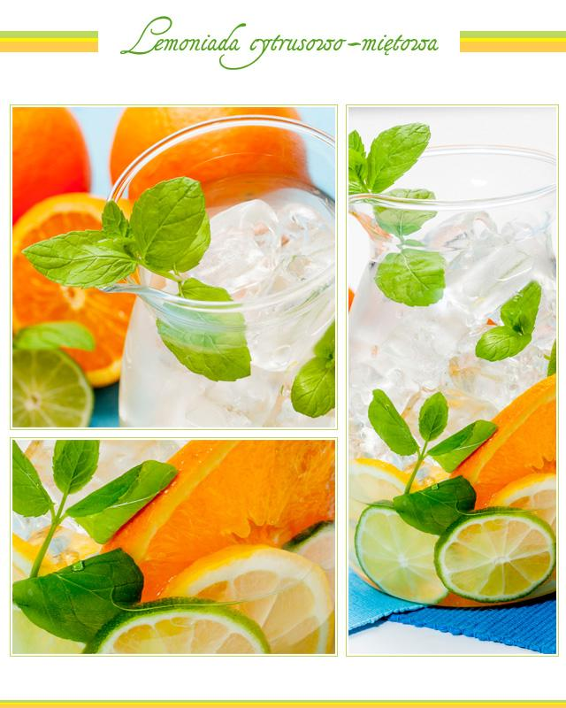 1663-lemoniada-cytrusowa-z-mieta1-limonk