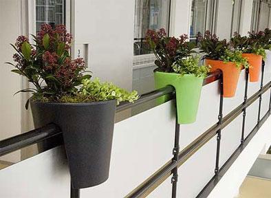 Kwiaty W Doniczkach Na Balkonie Na Balkon Taras Patio