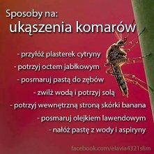sposoby na ukąszenia komarów