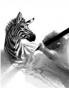 Ciekawa zebra