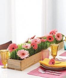 Ogród na stole - kompozycja dIY