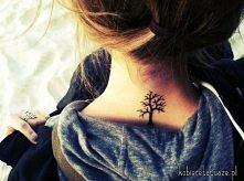 drzewoo