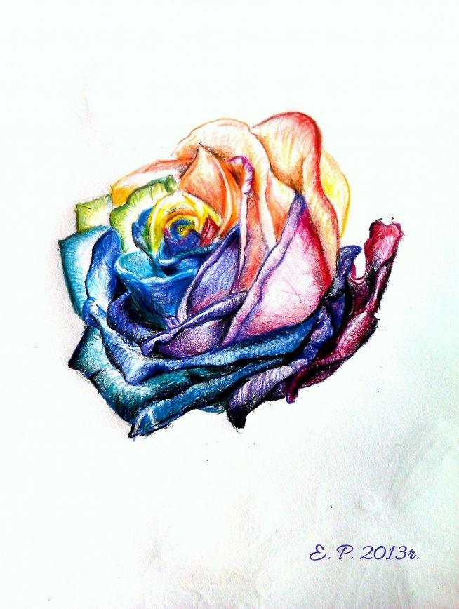 różyczka narysowana podczas wolnego popołudnia :)