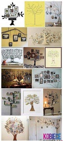 drzewo w domku