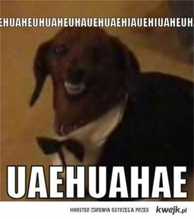 Huehuehuehue - Meme by jack09 :) Memedroid