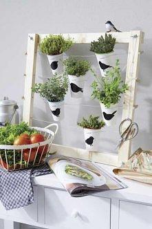 stojak na zioła