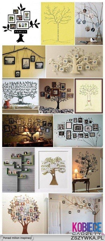 Domowe drzewo xd