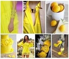 żółta kolekcja