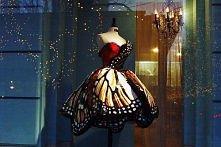 suknia-motyl, wow!