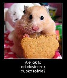 Hahahaah xD musiałam ;D