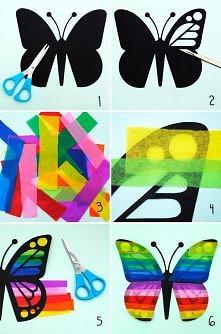 Motylek c: