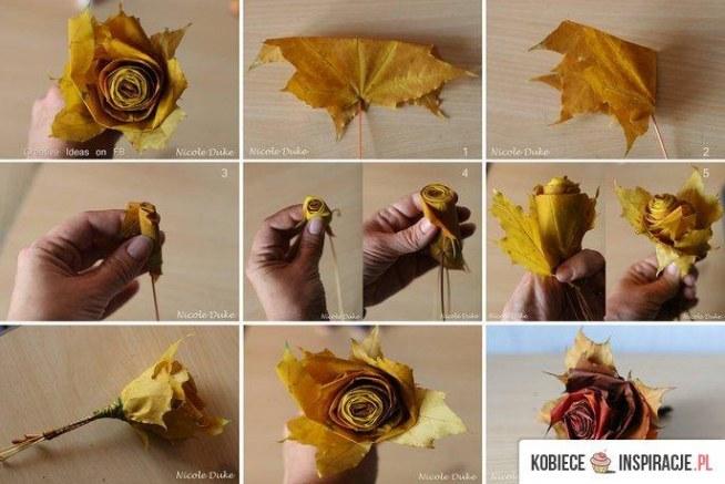 róża z liści
