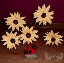 Żółte kwiatki z kasztanem w...