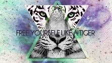 free yourself like a tiger.