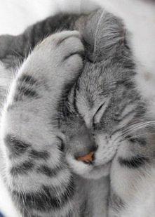 SO hard day...