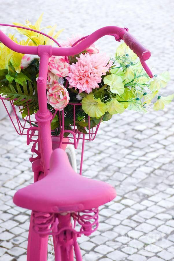 diy rowerek :*