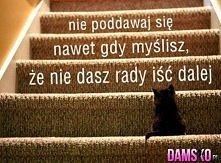 zawsze ... :((