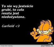 Garfield i jego mądrości :D
