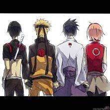 team 7 Naruto.
