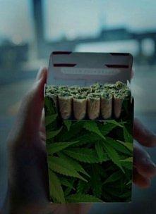 pali ktoś zielone?