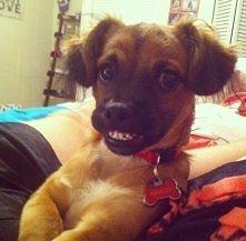 uśmiech! :D