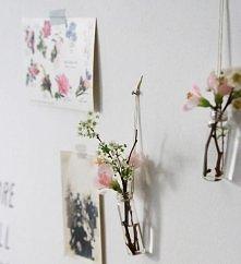 kwiaty we wnętrzu