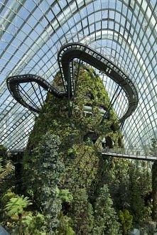 Ogrody Zimowe nad Zatoką w Singapurze (Gardens by the Bay) zdobyły podczas Światowego Festiwalu Architektury 2012 nagrodę główną, czyli tytuł Światowego Budynku Roku 2012. Jedno...