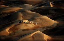 Emiraty, pustynia w Liwie