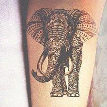 tatuaż słoń