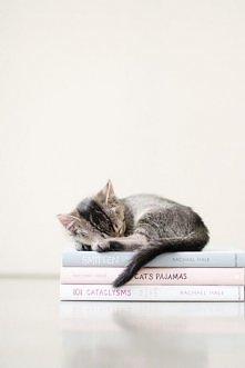 kot i książka czyli to co kocham najbardziej ;3