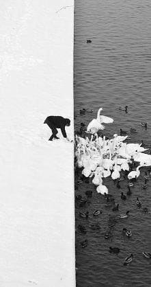 Fotografia Marcina Ryczka