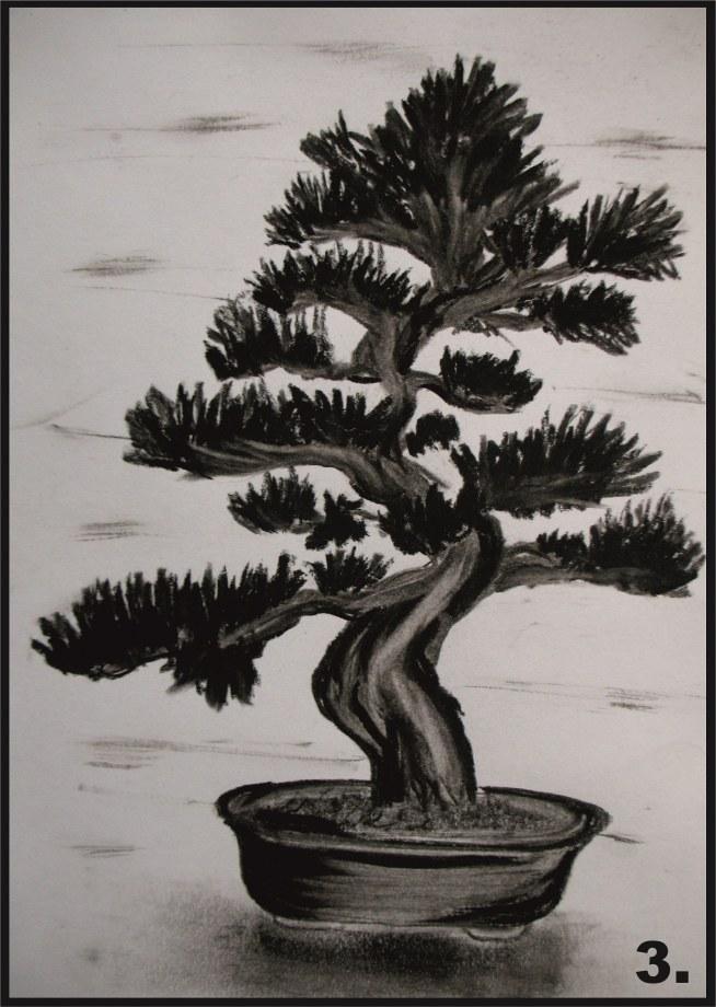 Drzewko Bonsai Wykonane Węglem Format A5 Na Rysunki I Inne