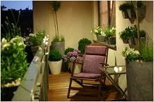 Zielony ogród na balkonie :)