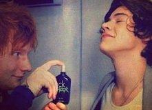 Ed i Harry :DDD