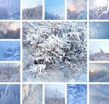 Kolejna seria zdjęć ukazująca piękno zimy!