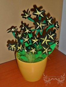 Czarne kwiatki 2
