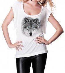 Studio Agama - Wolf