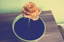 Jadalna ziemiaa jako prezent na urodziny ;p Żebyście widzieli minę mojej mamy jak dałam jej łyżeczkę i powiedziałam żeby zjadła :D - niesamowite :)