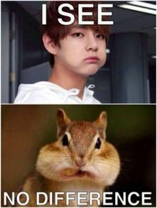 I see no difference
