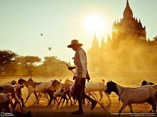 Birma.