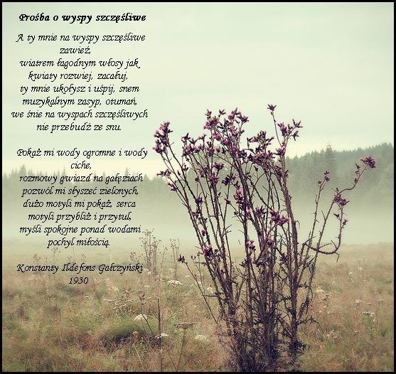 Mój Ukochany Wiersz Na To Co Lubię Zszywkapl