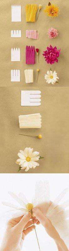 kwiaty z papieru - porównanie